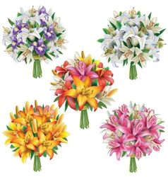 Set of lilies bouquets vector image