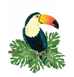 Toucan sitting on tree branch vector