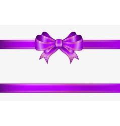 Violet ribbon and bow vector