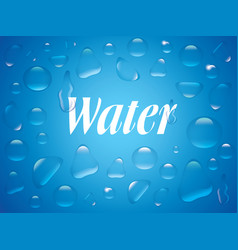clear transparent water drops isolated on the blue vector image