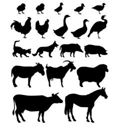 Farm animal vector