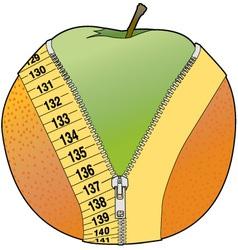 orange peel vector image vector image