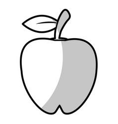 apple food nutrition - shadow vector image