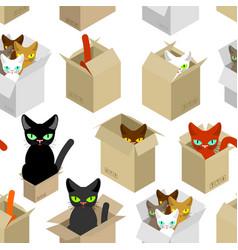 cat in box pattern pet in cardboard box vector image