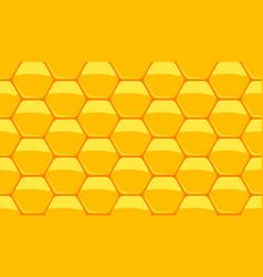 honey and wax vector image