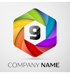 Nine number colorful logo in the hexagonal on vector