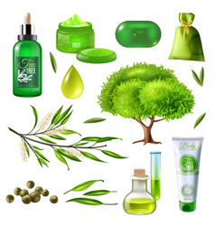 products of tea tree set vector image vector image