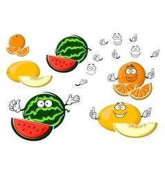 Ripe melon orange and watermelon fruits vector image