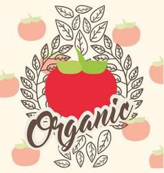 vegetables organic natural vector image
