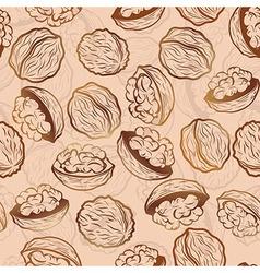 Walnut seamless pattern vector image