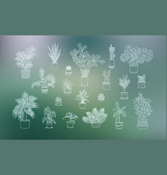 different houseplants icons in line art style vector image vector image