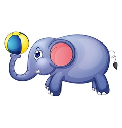 An elephant playing with a ball vector