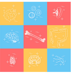 immune system icon set vector image