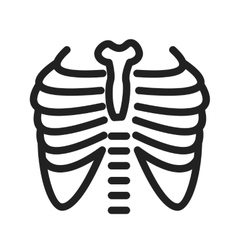 Lungs X ray vector