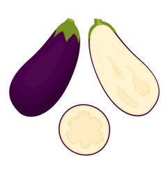 Set with eggplant vector
