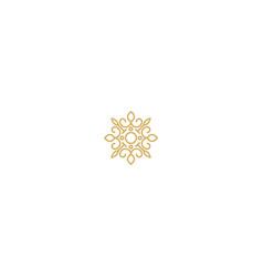 swirl abstract decorative luxury logo vector image