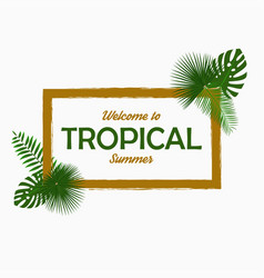 tropical card design with - palm leaves vector image