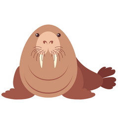 Walrus with happy face vector