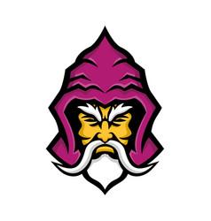 wizard head front mascot vector image