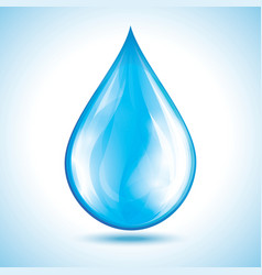 Glossy water drop isolated vector image