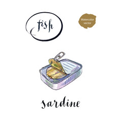Open preserve of sardine vector
