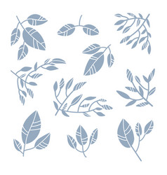 abstract leaves collection minimalistic art set vector image