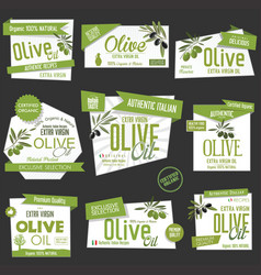 collection of olive oil labels and badges vector image