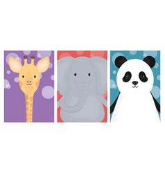 cute animals elephant giraffe and panda banner vector image