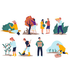 harvesting season character working on field or vector image
