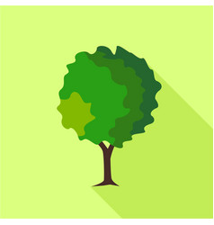 Round deciduous tree icon flat style vector