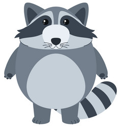 cute raccoon with happy face vector image vector image