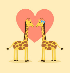 giraffes couple valentines vector image