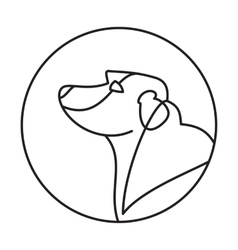 Head of breed dog labrador retriever vector image
