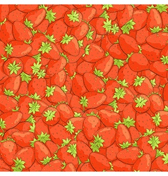 juicy strawberries vector image