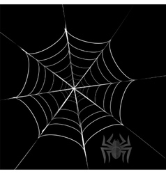 Polygonal Grey Spider and Her Cobweb vector image
