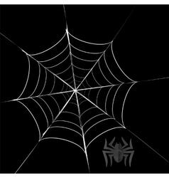 Polygonal Grey Spider and Her Cobweb vector
