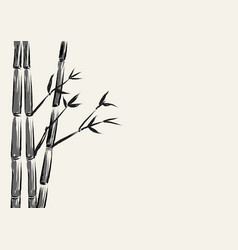 Sketch of bamboo tree vector