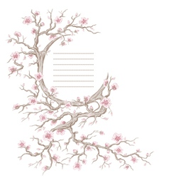 Hand drawn cherry blossom tree vector image vector image