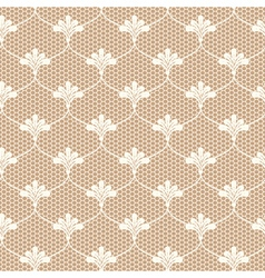 Beige lace on brown background vector image vector image