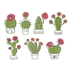 cactuses hand drawn outline cactus with flowers vector image