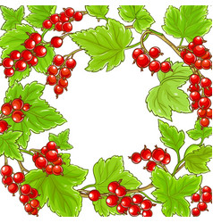 Red currant branches frame on white background vector