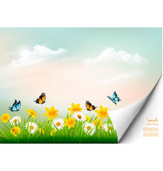 spring nature background with grass and flowers vector image