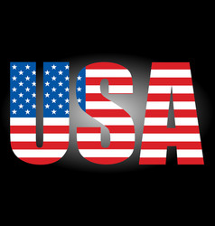 usa flag text icon - graphics vector image