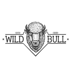 wild bull vector image