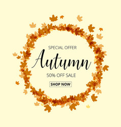 colorful autumn leaves and sale text fall season vector image vector image