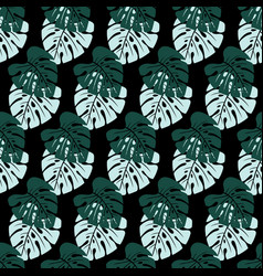 pattern with leaves on black vector image