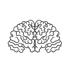 contour pattern with a picture of the brain a vector image
