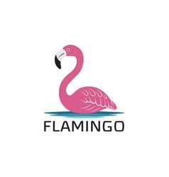 flamingo design on white background wild animals vector image