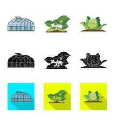 Isolated object of greenhouse and plant symbol vector