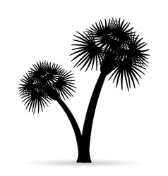 palm tree silhouette 04 vector image